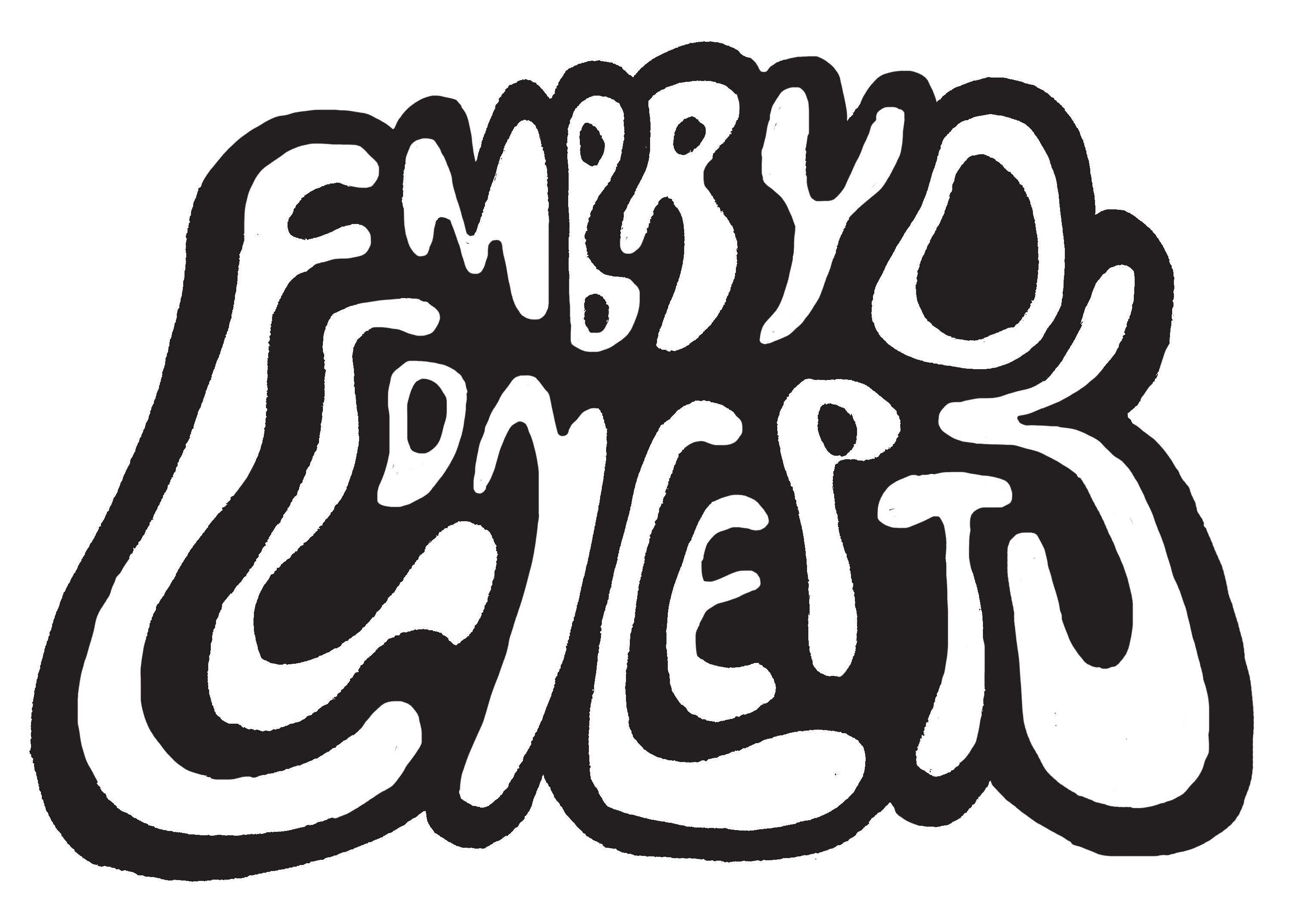 Embryo Concepts Zine and Collective